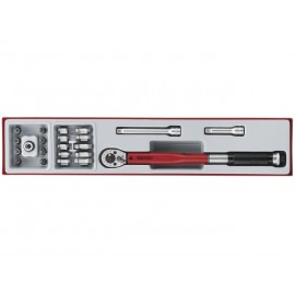 """Sada 3/8"""" momentový kľúč 20 - 110Nm s príslušenstvom, 22 dielov, Teng Tools"""